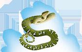 Reptiles - Snakes, Fish, Lizards