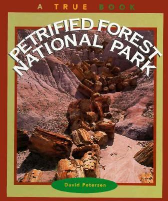 Petrified Forest National Park / by David Petersen.