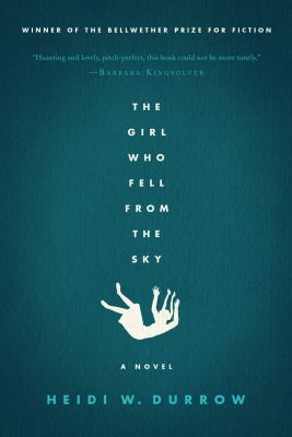 The girl who fell from the sky : a novel