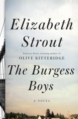 The Burgess boys a novel