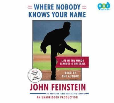Where nobody knows your name life in the minor leagues of baseball