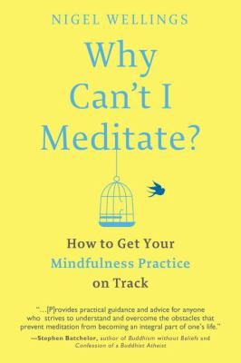 Why can't I meditate? : how to get your mindfulness practice on track