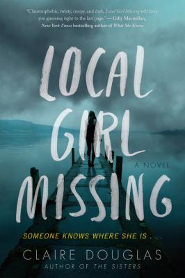 Local girl missing : a novel