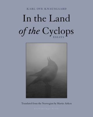 In the land of the cyclops : essays