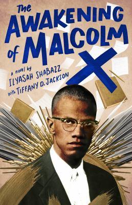 The awakening of Malcolm X : a novel