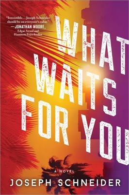 What waits for you : a novel