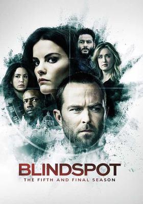 Blindspot. The fifth and final season.