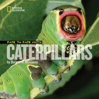 Face to face with caterpillars  Cover Image