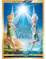Secret of the wings Cover Image