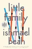 Little family : a novel Book cover
