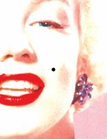 Beauty mark : a verse novel of Marilyn Monroe Book cover