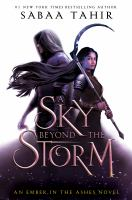 A sky beyond the storm : a novel Book cover