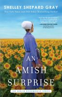 An Amish surprise Book cover