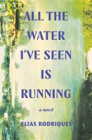 All the water I've seen is running : a novel Book cover