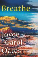 Breathe : a novel Book cover